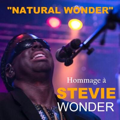 StevieWonderNaturalWonder-400